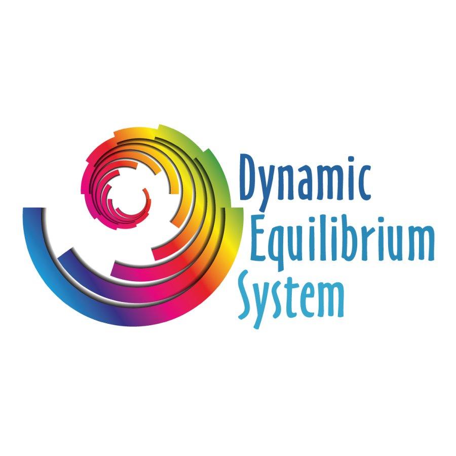 Dynamic Equilibrium System Ltd.