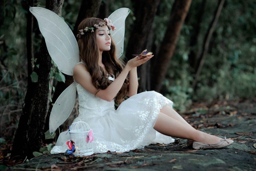 Σεβασμός στις πεταλούδες
